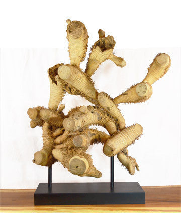 Bamboo Root Sculpture