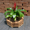 "8"" Octagonal Teakwood Baskets: 10 pcs/unit. Unit Price: $45.50"