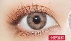 MiaoMou yearly Contact Lenses little wild cat brown(2pcs/box)