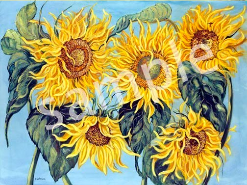 large sunflowers