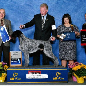 2013 Greenville Kennel Club Dog Show