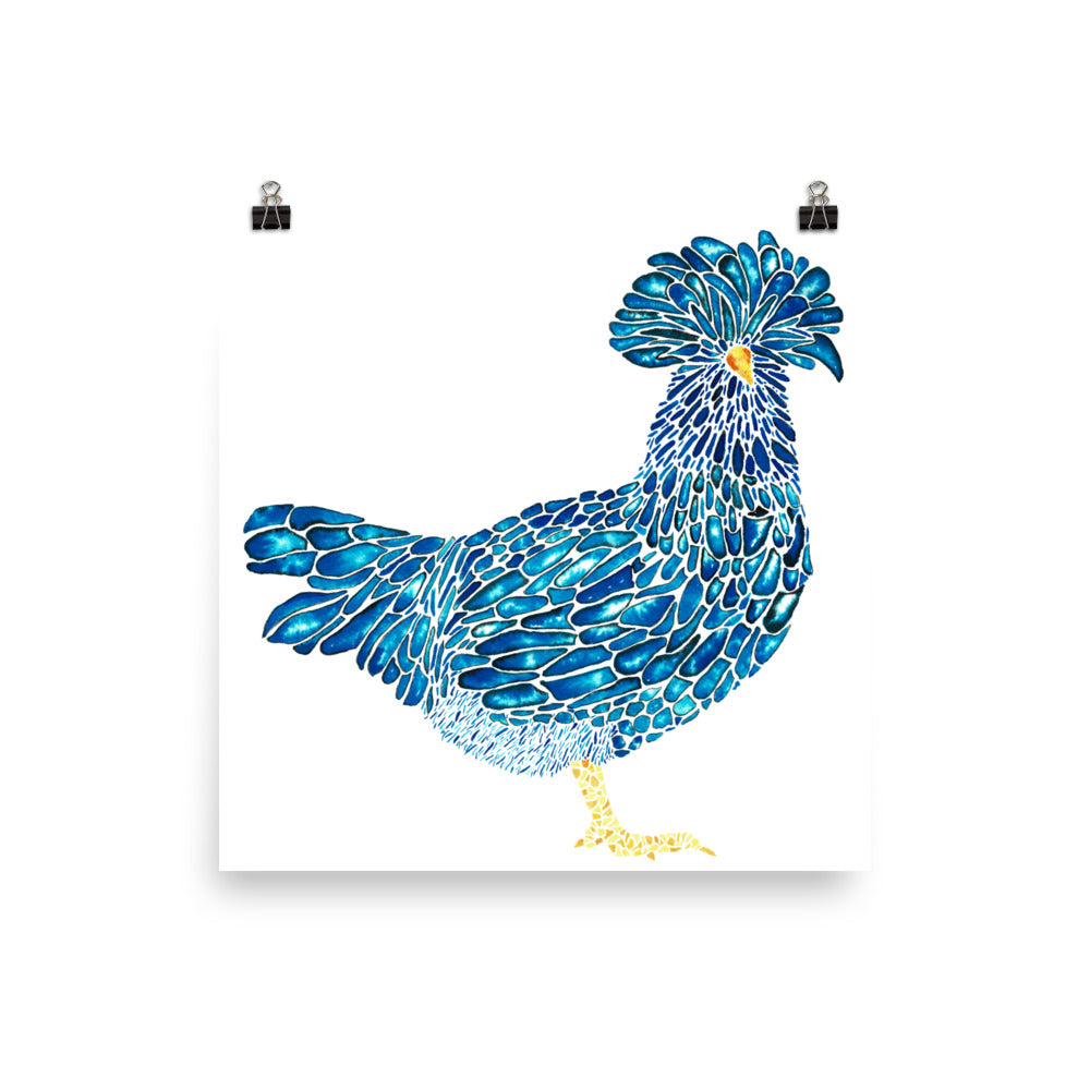 Polish Chicken - Indigo - Art Print