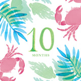 Tropical Baby Milestone Card Set + Swaddle Blanket + Print