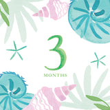 Tropical Baby Milestone Card Set + Swaddle Blanket
