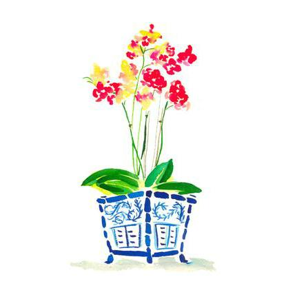 Orchid in Blue Pot Note Cards