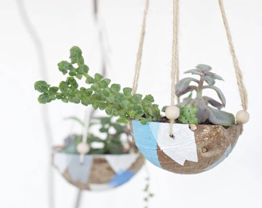 Go loco over coco | DIY your own Hanging Garden