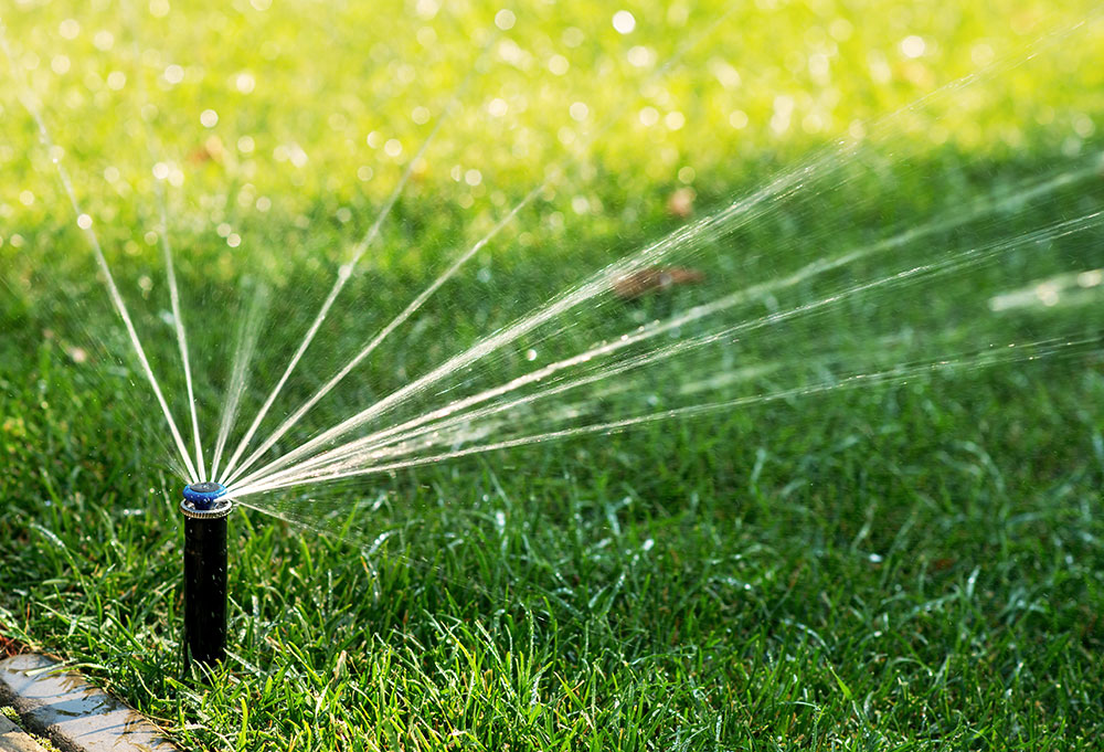Water used on your lawn