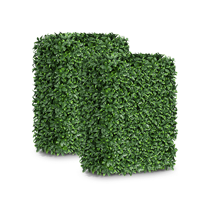 Privet Artificial Hedge