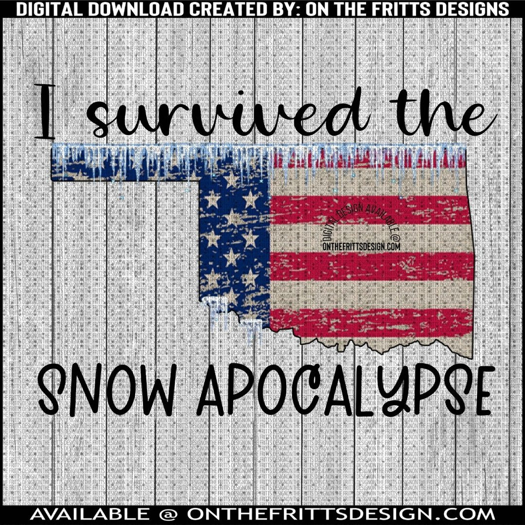 I survived the snow apocalypse