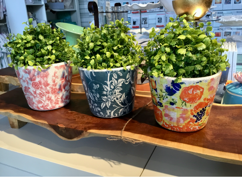 "e love this Botanical pop of whimsy and color! Rustic 5"" ceramic pots are $21.99 each. Green botanical orbs are $12.99. Sold separately or mix them together for a gift that keeps giving!"