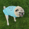 For Dogs - Hand Screen Printed Aqua Blue T-Shirt with Squirrel Artwork