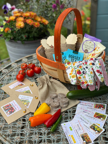 Bee Bountiful! - The Ideal Gift Set for the Gardener in your Life!