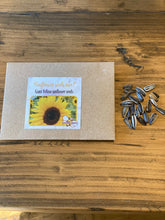 Giant Yellow Sunflower Seeds