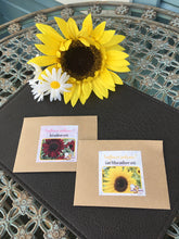 Giant Yellow and Red Sunflower Seeds