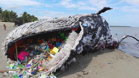 plastic-pollution-whale