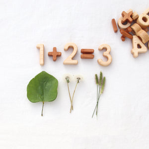 Wood Number and Math Symbol Blocks