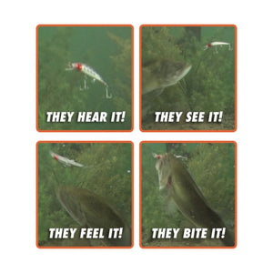 Lifelike Twitching Fish Lure - Guaranteed To Catch You Something! - -