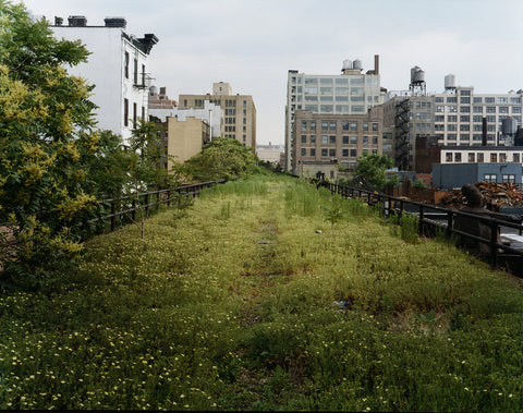 the Highline - photo by Joel Sternfeld