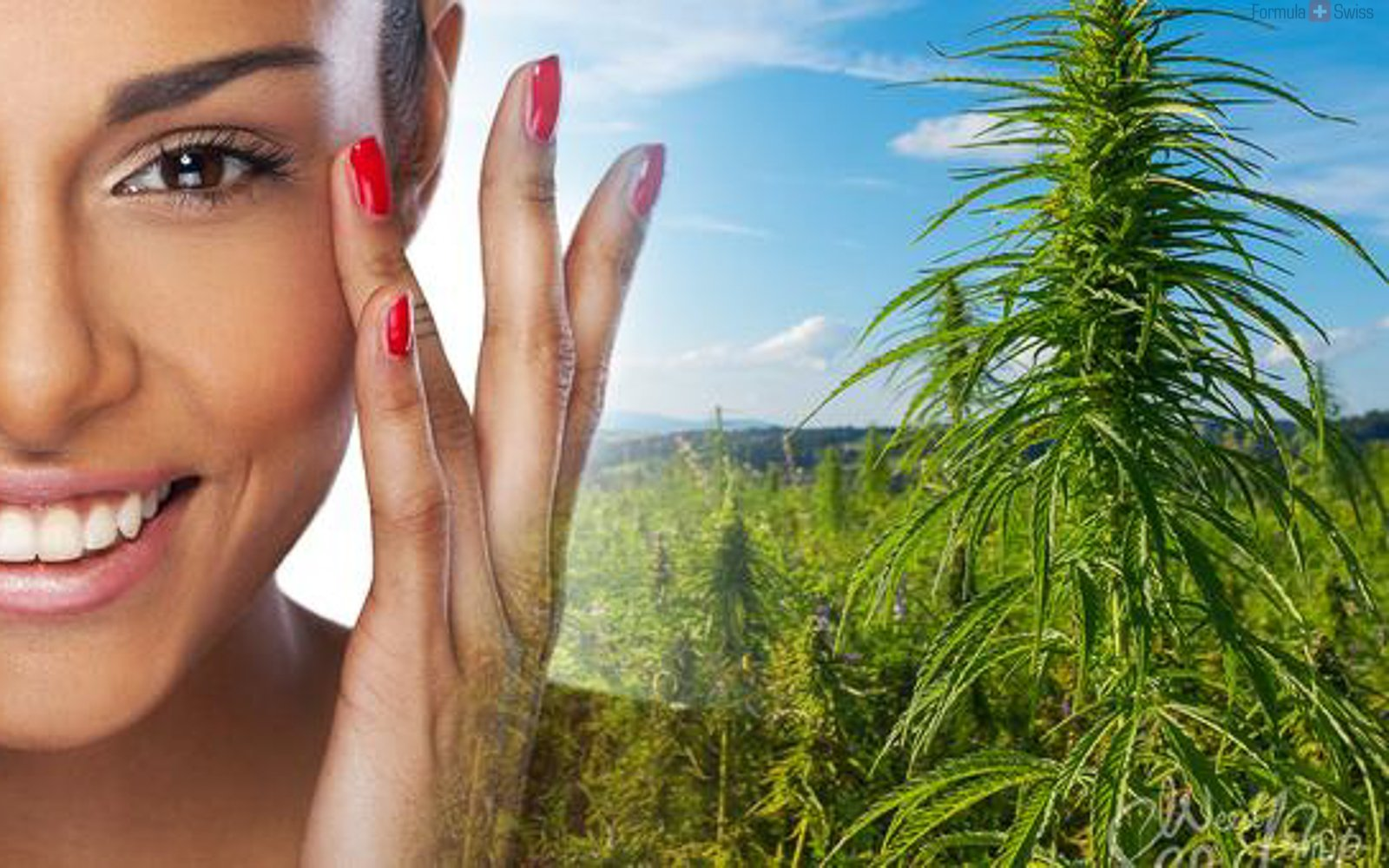 Can CBD improve your skin?