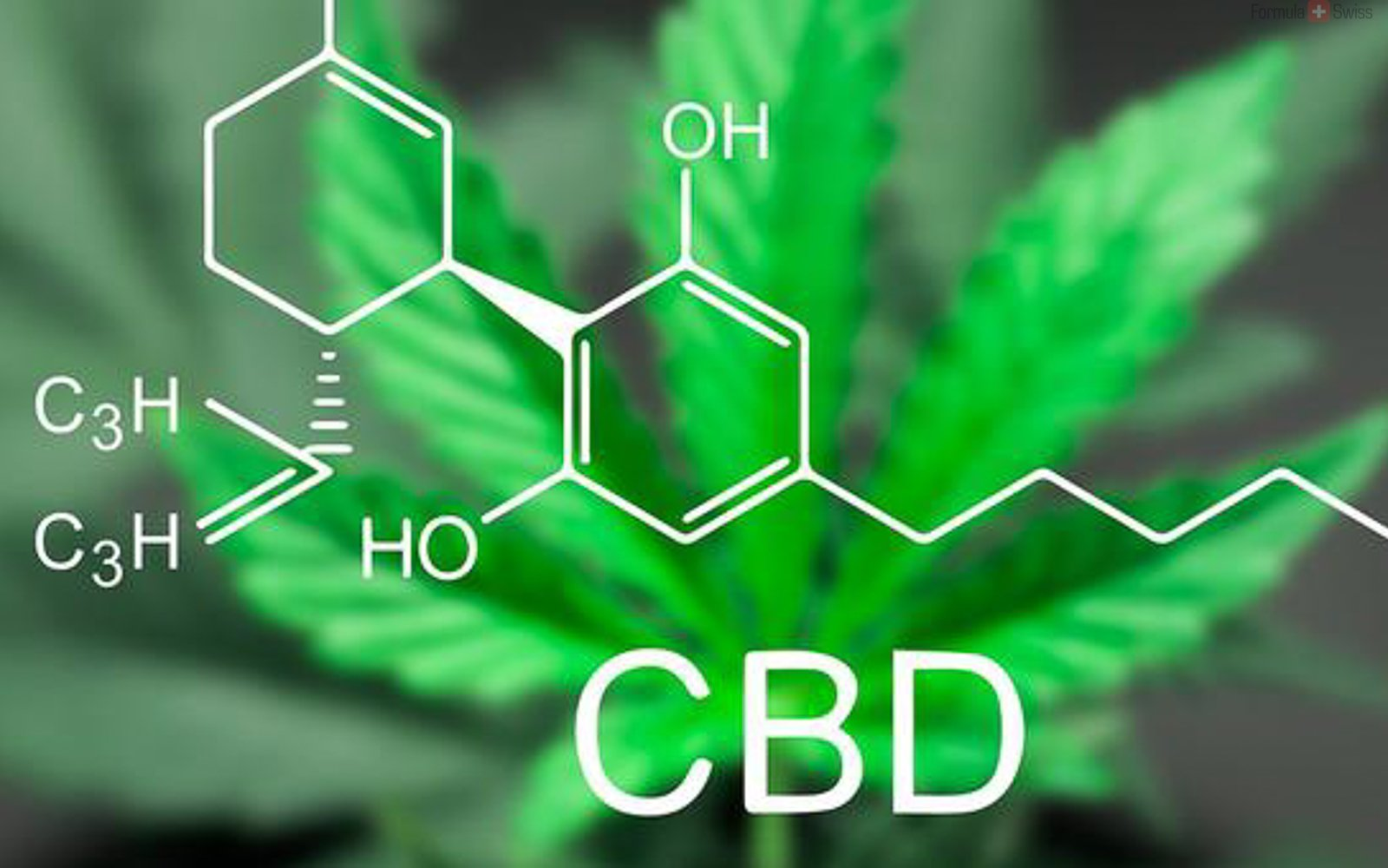 The benefits of CBD cream for pain