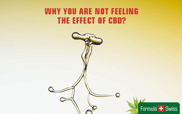 Reasons you are not feeling the effect of CBD