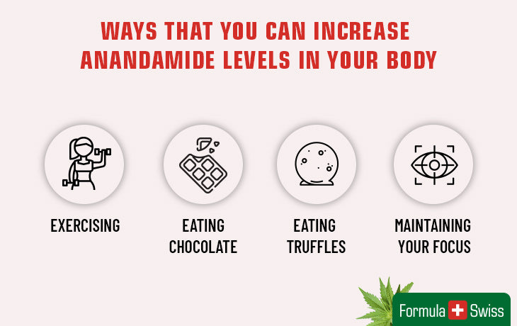 Ways to increase anandamide levels in your body