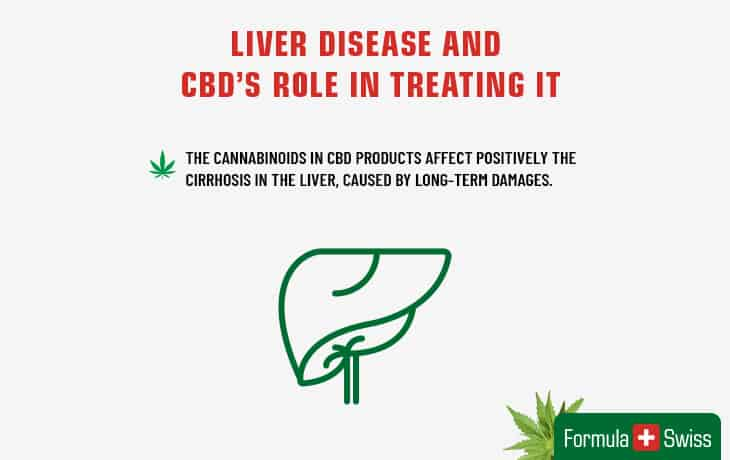 Liver disease and CBD`s role in optimizing it