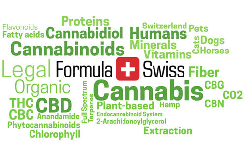 CBD Oil and CBD Creams - Highest Quality from Switzerland