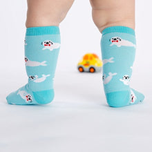 Load image into Gallery viewer, Sock It To Me Baby Seals Toddler Knee High Socks