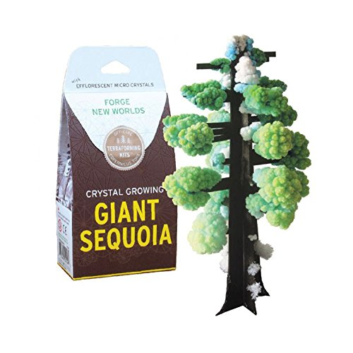 Copernicus Toys Crystal Growing: Giant Sequoia