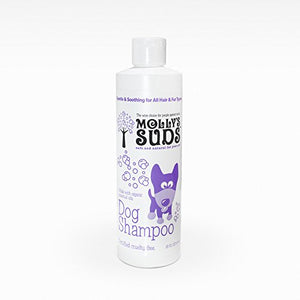 Molly's Suds All-Natural Dog Shampoo