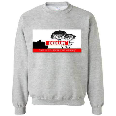 Life Is To Short To Worry