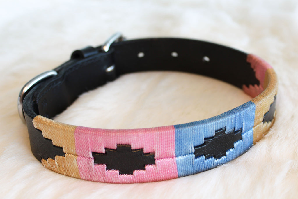 Argentinian Polo Dog Collar