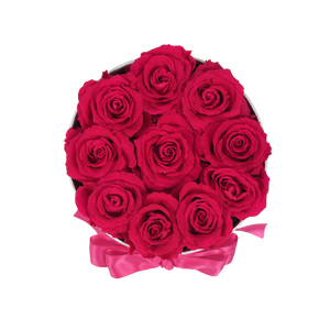 Orb Original Hot Pink Roses