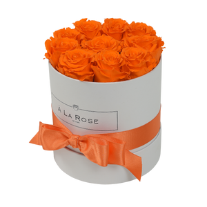 Orb Original Orange Roses