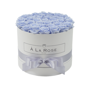 Orb Grand Lilac Roses