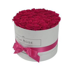 Orb Grand Hot Pink Roses