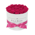 Orb Deluxe Hot Pink Roses