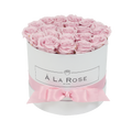 Orb Deluxe Baby Pink Roses