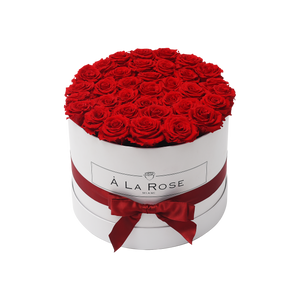 Orb Grand Red Roses