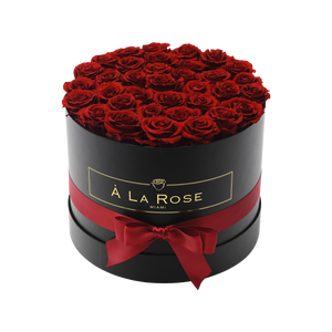 Orb Grand Antique Red Roses