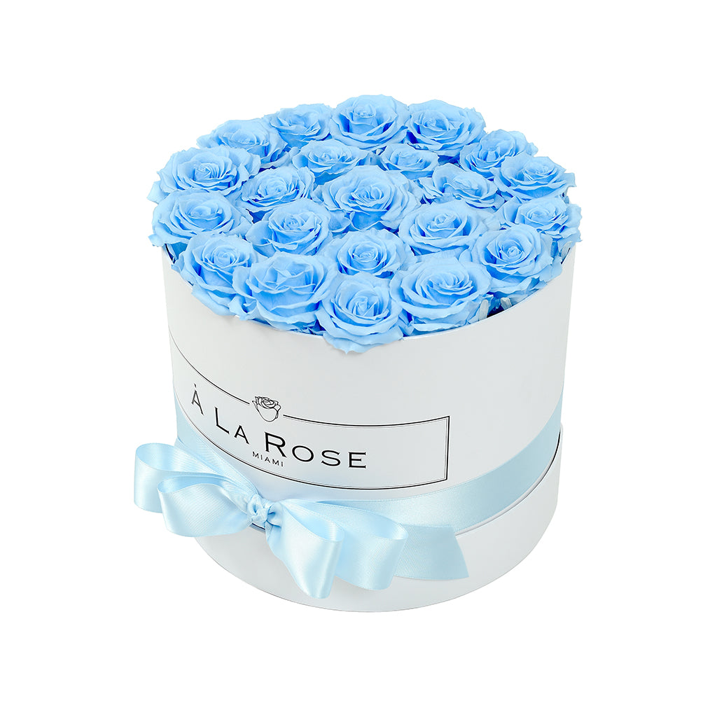Baby Blue Roses