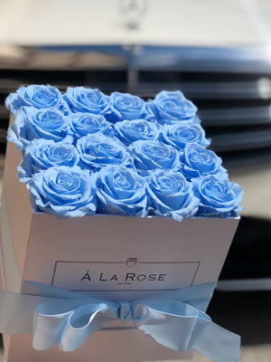 Rouge Light Blue Roses