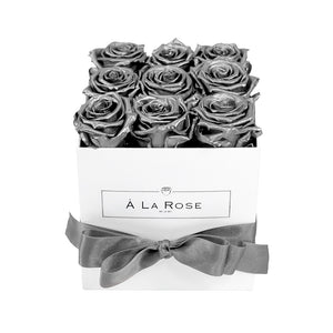 Silver Fox Roses