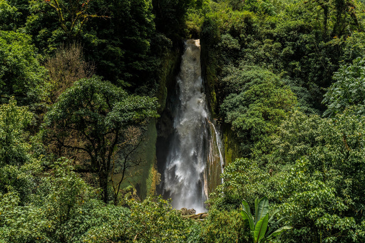 Coffee Farmers and Waterfalls