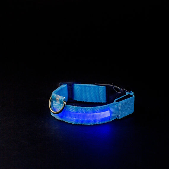 LED Collar - Night Safety