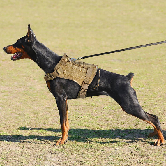 Military K9 Training Vest for Large Dogs