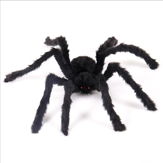 Horrible Big Black Furry Spider