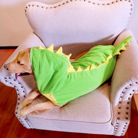Large Dog Dinosaur Costume