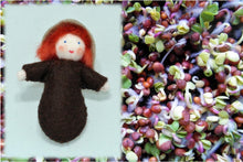 Seed Baby | Waldorf Doll Shop | Eco Flower Fairies